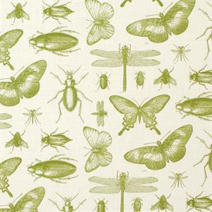 Entomology-pattern-fabric-gr